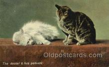 cat001789 - Cat Cats, Old Vintage Antique Postcard Post Card