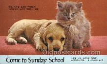cat001795 - Cat Cats, Old Vintage Antique Postcard Post Card