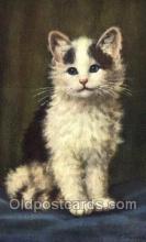 cat001830 - #167 Artist Lampe Old Vintage Antique Post Card Post Card