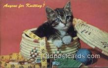 cat001860 - Chrome Cat Postcard, Post Card, Postales, Postkaarten, Kartpostal, Cartes, Postale, Postkarte, Ansichtskarte