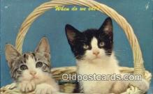 cat001879 - Chrome Cat Postcard, Post Card, Postales, Postkaarten, Kartpostal, Cartes, Postale, Postkarte, Ansichtskarte