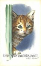 cat001897 - Chrome Cat Postcard, Post Card, Postales, Postkaarten, Kartpostal, Cartes, Postale, Postkarte, Ansichtskarte
