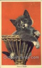 cat001901 - Chrome Cat Postcard, Post Card, Postales, Postkaarten, Kartpostal, Cartes, Postale, Postkarte, Ansichtskarte