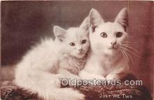 cat002044 - Just We Two CE Bullard Postcard Post Card