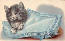 cat002055 - Postcard Post Card