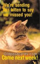 cat002073 - Lord is My Helper Hebrews 13:6 Postcard Post Card