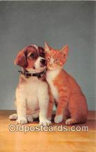 cat002088 - Postcard Post Card