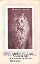 cat002104 - Silver Jessamine H I Robbins Postcard Post Card