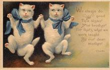 cat002112 - Cat Post Card Old Vintage Antique