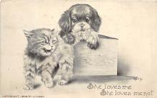 cat002142 - Cat Post Card Old Vintage Antique