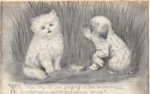 cat002145 - Cat Post Card Old Vintage Antique