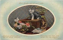 cat002162 - Cat Post Card Old Vintage Antique