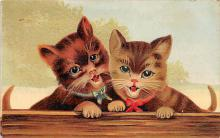 cat002171 - Cat Post Card Old Vintage Antique