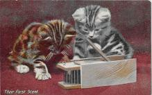 cat002191 - Cat Post Card Old Vintage Antique