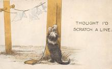 cat002200 - Cat Post Card Old Vintage Antique