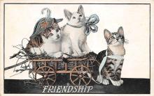 cat002235 - Cat Post Card Old Vintage Antique