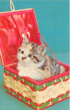 cat002249 - Cat Post Card Old Vintage Antique