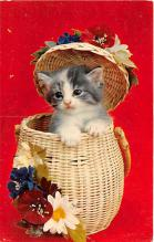 cat002289 - Cat Post Card Old Vintage Antique