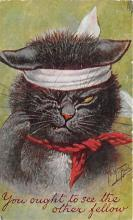cat002291 - Cat Post Card Old Vintage Antique