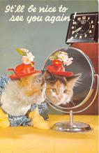 cat002298 - Cat Post Card Old Vintage Antique