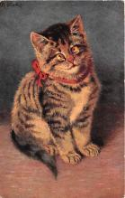 cat002302