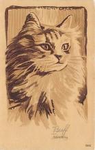 cat002304