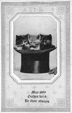 cat002319 - Cat Post Card Old Vintage Antique