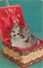 cat002334 - Cat Post Card Old Vintage Antique