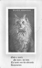 cat002338 - Cat Post Card Old Vintage Antique