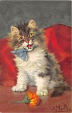 cat002343 - Cat Post Card Old Vintage Antique