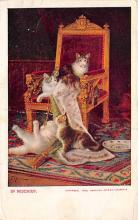 cat002383 - Cat Post Card Old Vintage Antique
