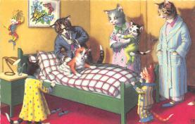cat254313 - Cat Post Card Old Vintage Antique