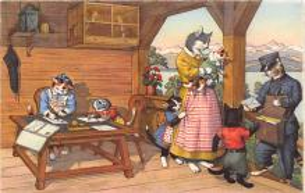 cat254359 - Cat Post Card Old Vintage Antique