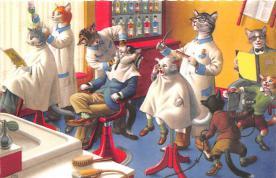 cat254381 - Cat Post Card Old Vintage Antique