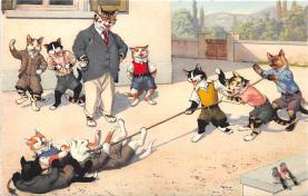 cat254385 - Cat Post Card Old Vintage Antique