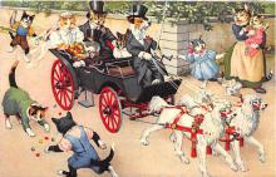 cat254386 - Cat Post Card Old Vintage Antique