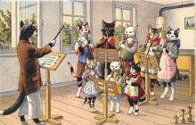 cat254400 - Cat Post Card Old Vintage Antique