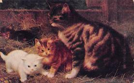 cat300031