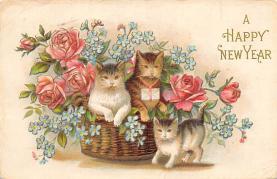 cat300059