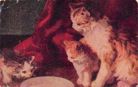 cat300105