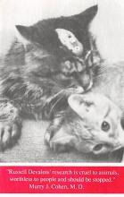 cat300127