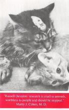 cat300131