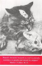 cat300133