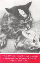 cat300135