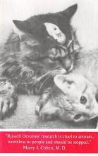 cat300137