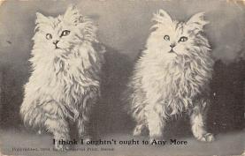 cat300155