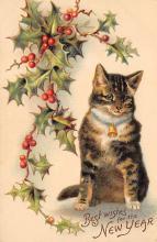 cat300163