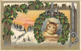 cat300173