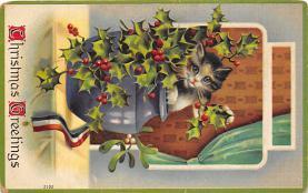 cat300175