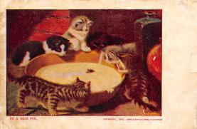 cat300211
